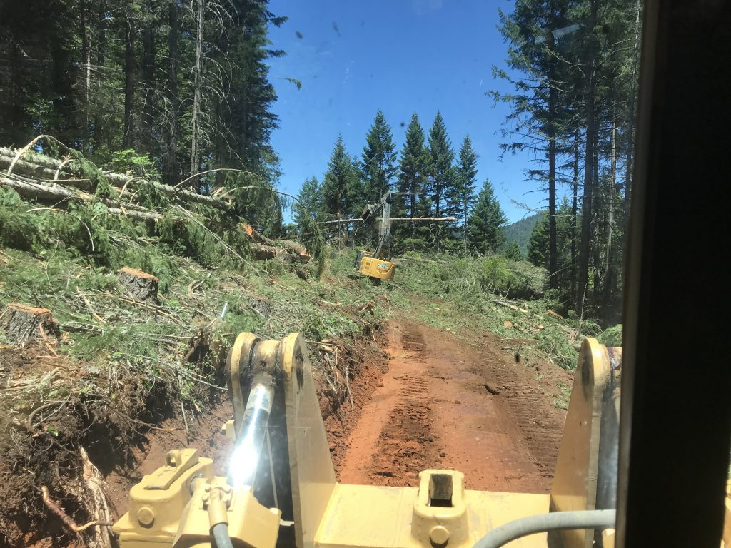 timber-services-site-line-clearing